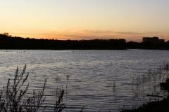 Shadow Lake 1